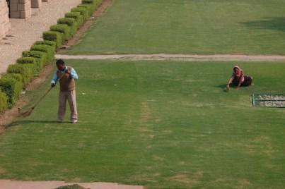 Painstaking lawn maintenance at the Gandhi memorial, New Delhi