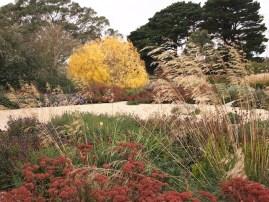 Image by GardenDrum.com