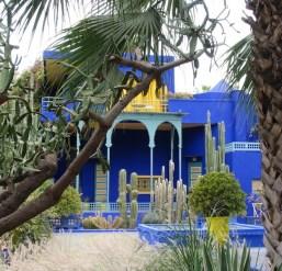Garden Majorelle, Morocco. Photo Helen Young