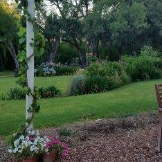 Leanne and John Anderson's garden Condobolin