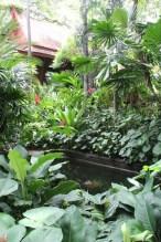 Thailand - Jim Thompson Garden in Bangkok. Photo Arno King