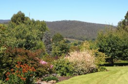 Crawleighwood Nursery and Gardens, southern Tasmania