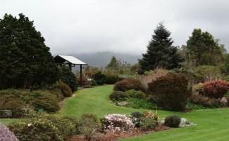 Pukeiti Gardens, New Zealand. Photo Helen McKerral