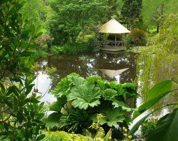 Reflection pond at Ayrlies Photo brewbooks