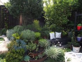 Inner West Sydney garden. Design Brendan Moar