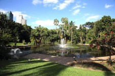 Ornamental pond in Brisbane City Botanic Gardens Photo Brisbane City Council