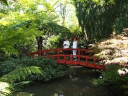 Visitors enjoying 'Elegans' open garden