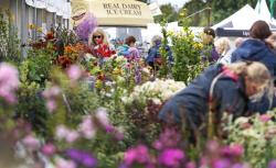 Southport Flower Show plant stalls