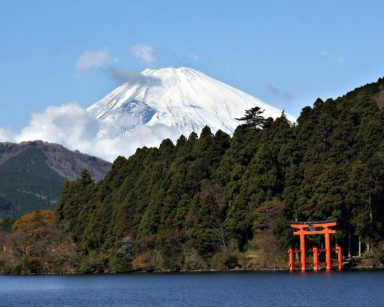 Mt Fuji with Torii Gate, Hakone