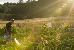 Fat Pig Farm, Glaziers Bay, Tasmania Operated by Food critic-turn-SBS Gourmet Farmer and his partner Sadie Chrestman