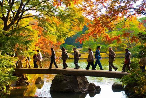 Rikugi-en Garden, Tokyo © Kyle Hasegawa/flickrCC