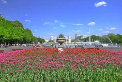 Gorky Park, Moscow © Kristina Wilson