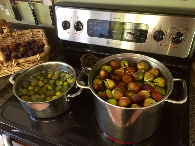 Boil figs with baking soda