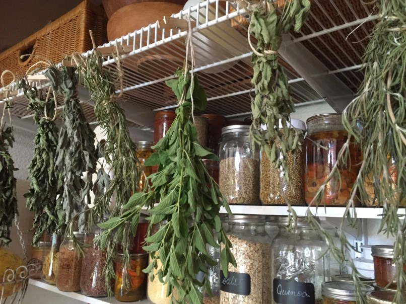 Hanging herbs in the pantry