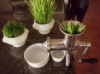wheatgrass juicer