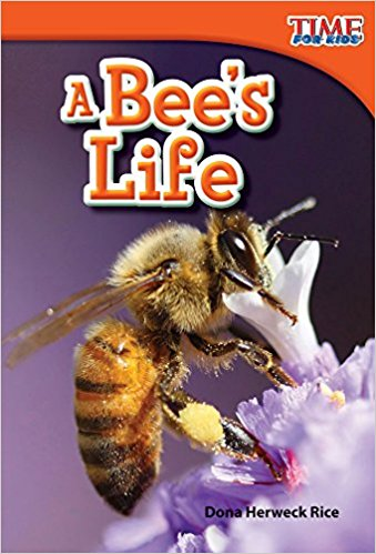 A bee's life