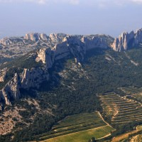 The Two Invisible Forces Shaping Southern French Terroir