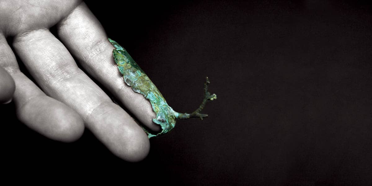 Marisa Molin, Symbiosis Series - Branch Finger (After), 2007, Bronze, plastic, enamel paint, 5.5 x 2 x 3.5cm, photo: Marisa Molin, made in Tasmania