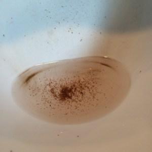 Dirty bowl