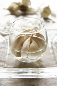 GARLIC MATTERS - WEEKLY NEWS How to grow garlic sprouts at home? Easy!