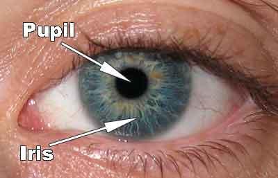 Pupil test