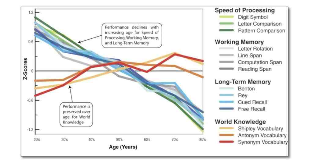 working memory declines with age