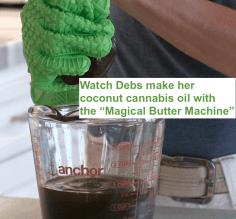 Making coconut cannabis oil