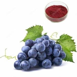 Resveratrol is an extract of red and purple grapes and is thought to be a useful stem cell therapy.