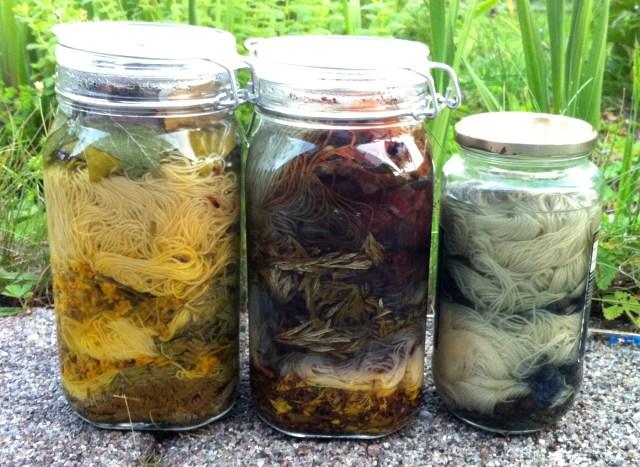 Solfarvningsglas, dag 1 / solar dyeing jars, day 1