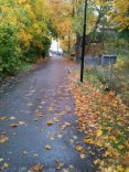 My main school, the pathway ís always inviting, even in the rain.