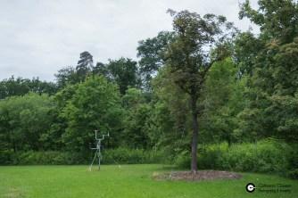 Garnisonsschuetzenhaus-Dornhaldenfriedhof-S21-Baeume_28Mai14_CClausen-2