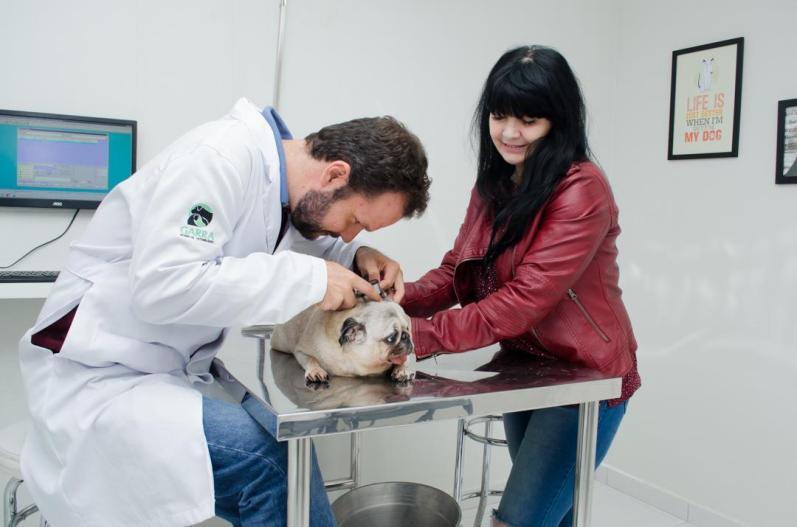 Atendimento Bruno - Garra Hospital Veterinario