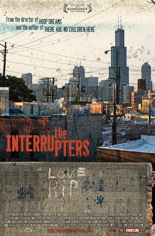 Interrupters