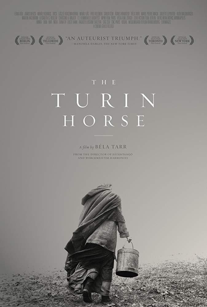 turin horse