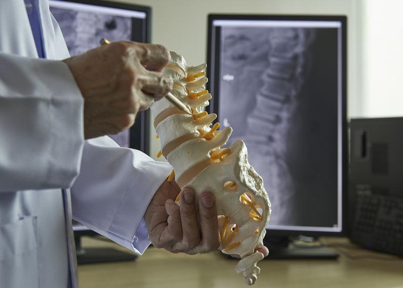 A neurosurgeon using pencil pointing at lumbar vertebra model