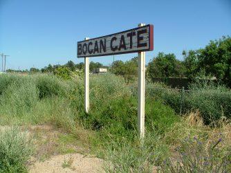 Bogan Gate 24Nov2010 (6)