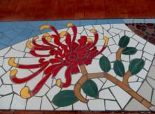 Meandering Macintyre Inverell footpath mosaic (15)