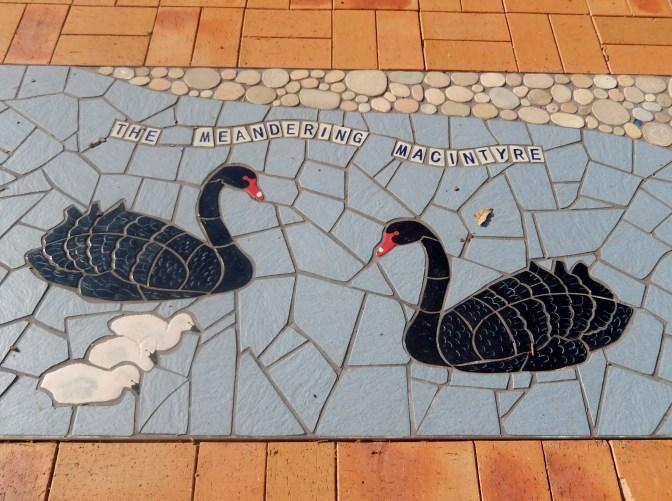 Meandering Macintyre Inverell footpath mosaic (23)