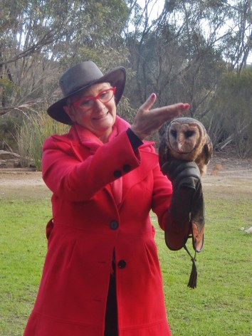 Raptor Domain Birds of Prey Kangaroo Island 2016-06-06 (9)