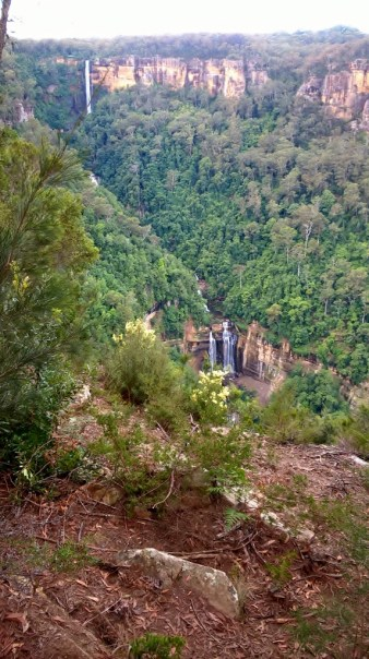Fitzroy Falls 21 April 2017 Bushwalk with Grandchildren (15) (573x1024)