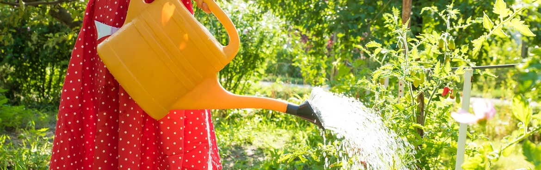 Gartenarbeit im August