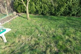 Um einen Baum herum liegen kreisförmig Bambusstöcker ausgelegt