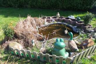 Kleiner Gartenteich mit vertrockneten Gräsern vorrangig auf der linken Seite.