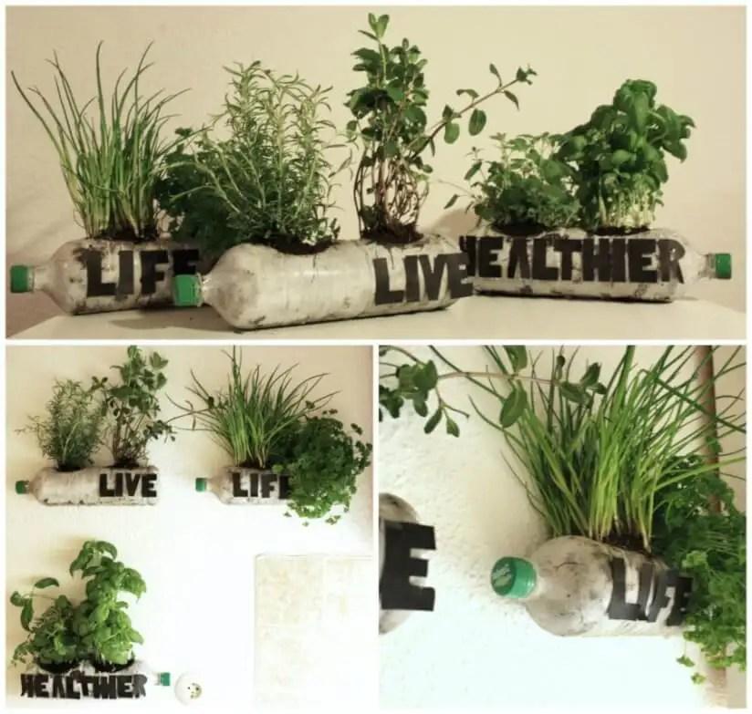 Hängende Gärten: Pflanzen vertikal anbauen