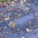 Pothole Filling