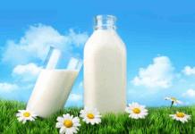 Tumbuh Kembang Anak Lebih Sempurna dengan Susu S26 Promil Gold