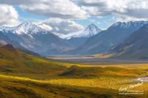 Denali NP Alaska