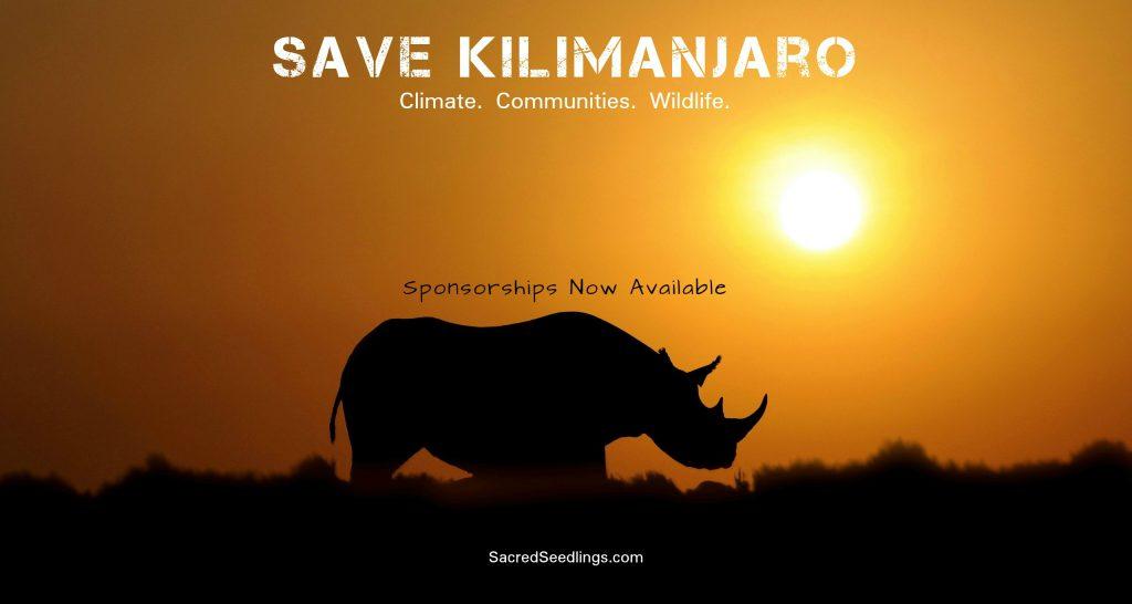 wildlife conservation Africa