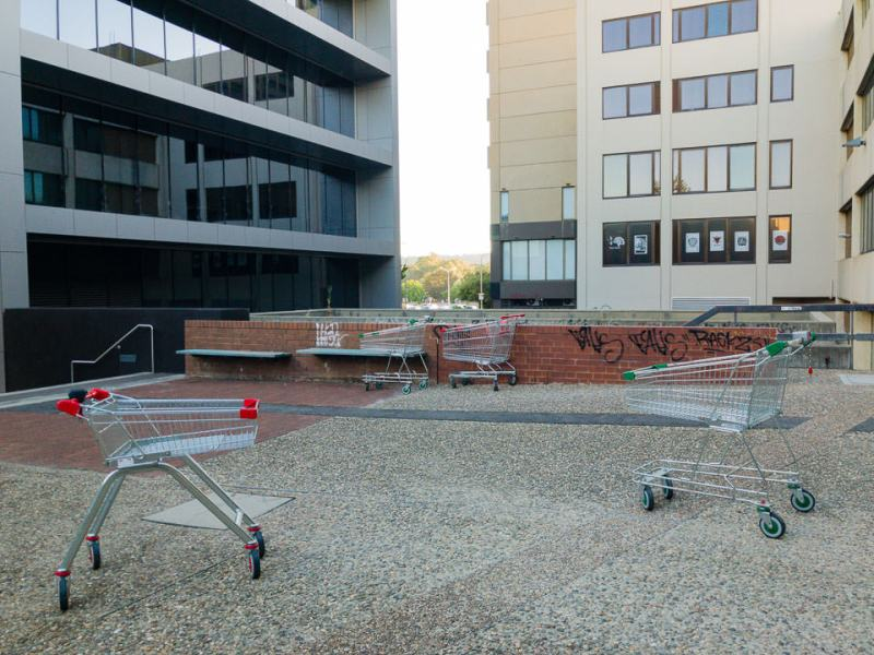 These trolleys stand defiant despite their chains despite their bondage. #canberra #cbr #nannystate #civildisobedience #chains #iphone