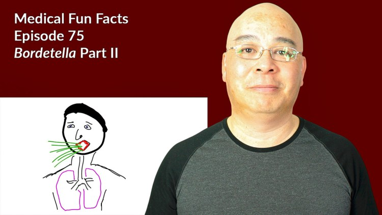 I recorded Medical Fun Facts Ep 75 Bordetella Part II today Gary Lum